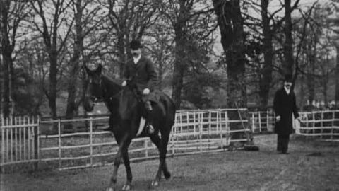 Ambush II at Eyrefield Lodge, The Curragh (1902)